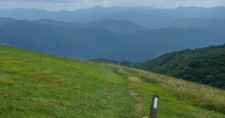 Max Patch & Harmon Den